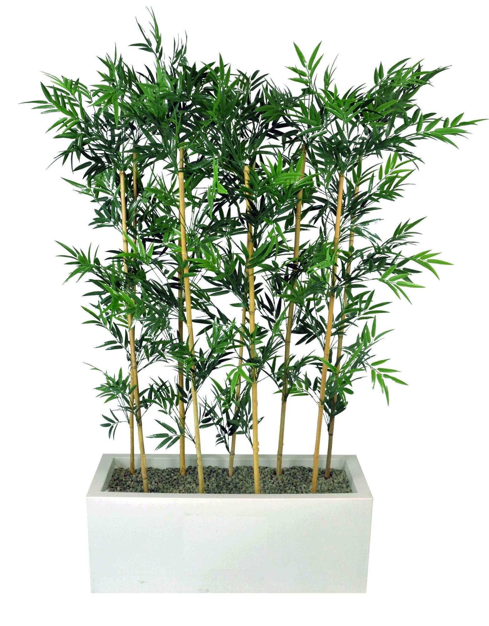 Set Da Giardino In Bamboo.Bamboo Piante Artificiali Da Esterno Interno Viridium